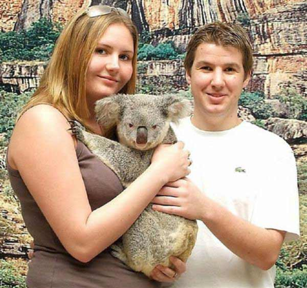 Koala Joeys get fully developed at the age of 9 months.